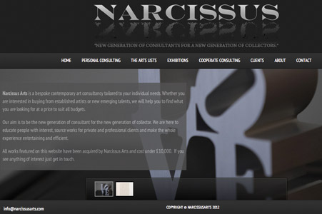 Creation site internet Narcissusarts