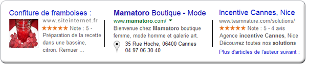 Exemples Rich Snippets - Création site Internet Nice